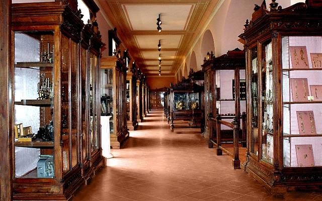 MUSA Museo Universitario delle Scienze e delle Arti Sezione Anatomia