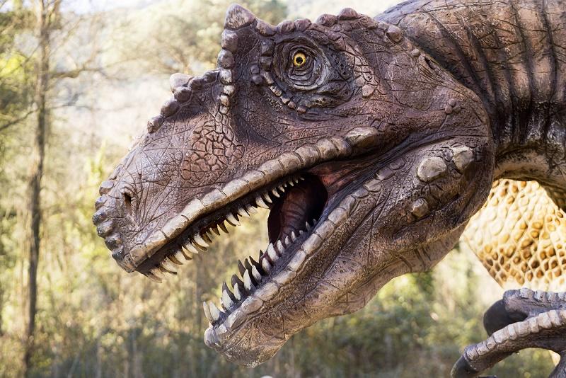 """""""Dinosauri in carne ed ossa"""" all'Oasi WWF Cratere degli Astroni"""