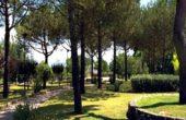 September More - programma musicale e di eventi al Parco del Poggio