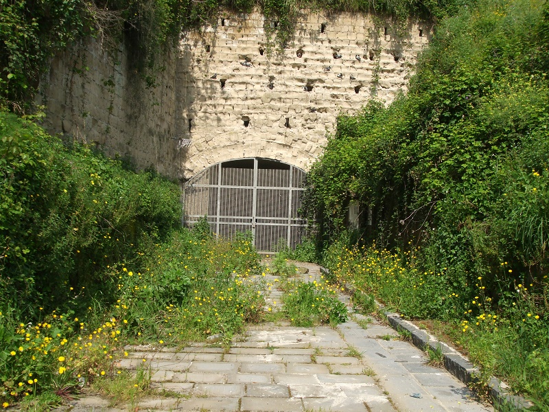 Dal degrado alla rinascita: riapre la Grotta di Cocceio a Pozzuoli