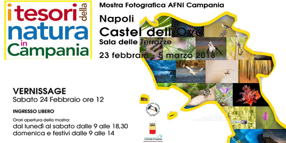 """""""I Tesori della Natura in Campania"""" – Mostra Fotografica nel bellissimo scenario di Castel dell' Ovo"""