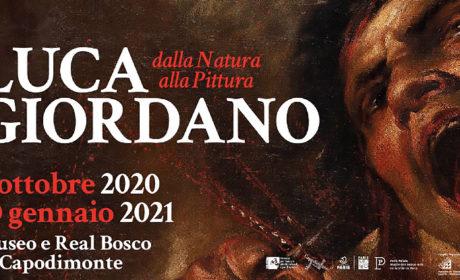 Luca Giordano, dalla natura alla pittura – Mostra a Capodimonte